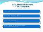 specific recommendations 4 key components