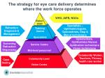 the strategy for eye care delivery determines where the work force operates