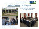 executing examples