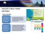 using bc s labour market information