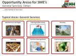 opportunity areas for sme s general services detail
