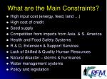 what are the main constraints