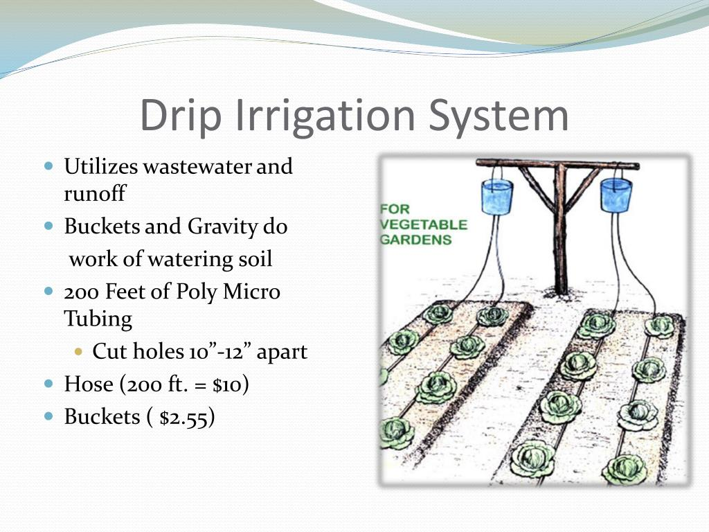 Ppt Water Crisis In Kenya Powerpoint Presentation Id