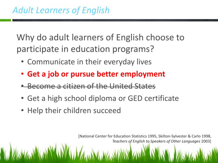 Adult Learners of English