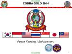 cobra gold 2014