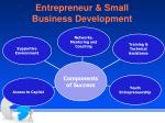 entrepreneur small business development