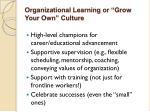 organizational learning or grow your own culture
