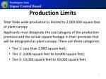 production limits