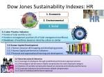 dow jones sustainability indexes hr