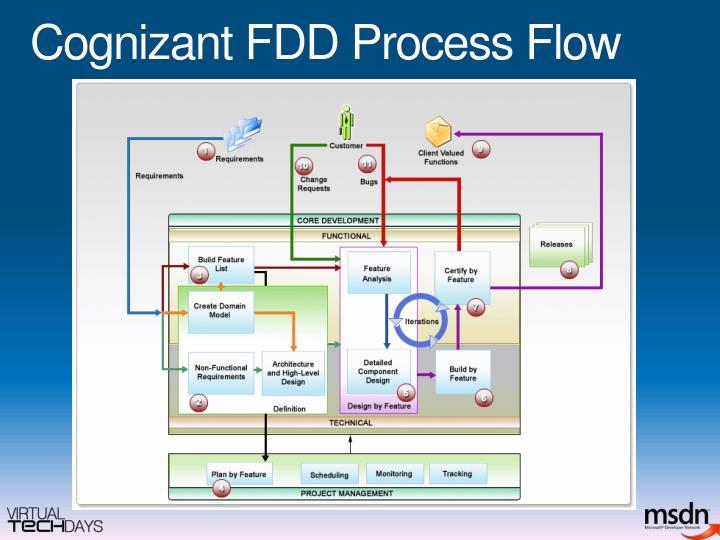 Cognizant FDD Process Flow