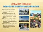 capacity building disaster preparedness and response