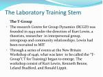 the laboratory training stem1