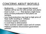 concerns about biofuels