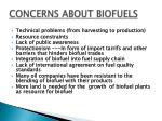 concerns about biofuels1