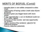merits of biofuel contd2