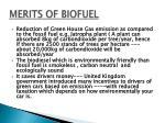 merits of biofuel