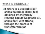 what is biodiesel