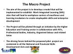 the macro project