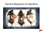 vaccine response to capridine