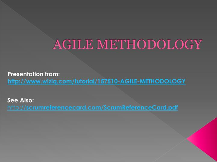 agile methodology n.
