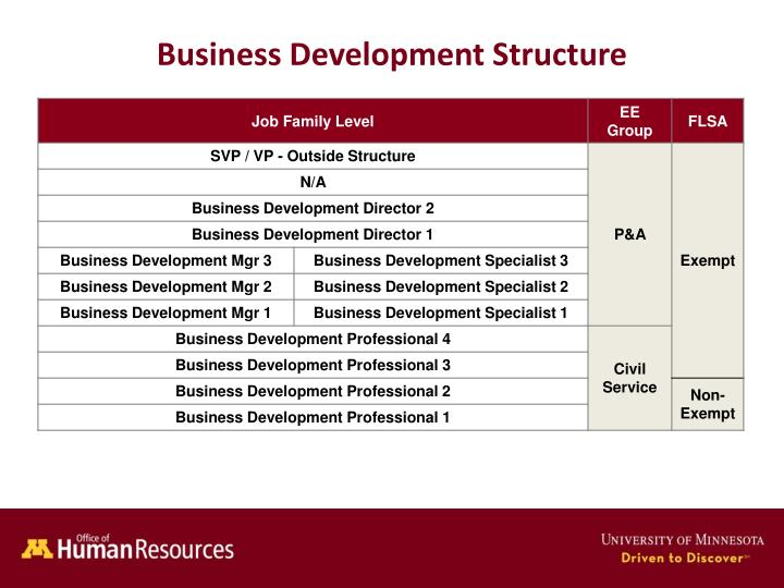 business development structure n.