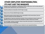 other employer responsibilities it s not just the mandate