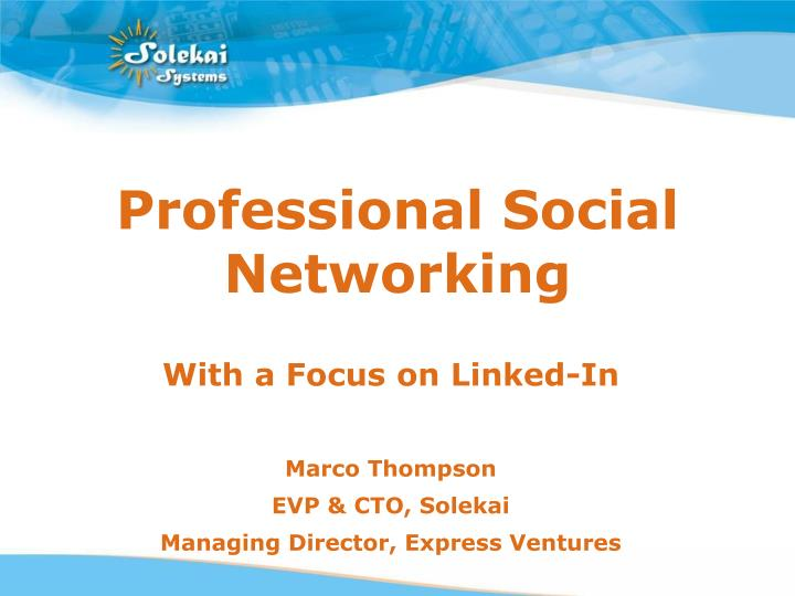 professional social networking n.
