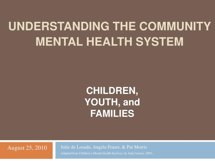 understanding the community mental health system n.