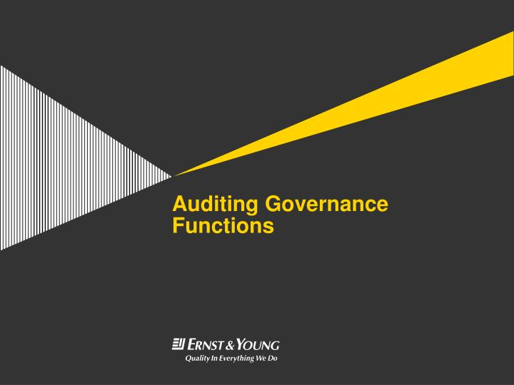 auditing governance functions n.