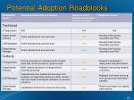 potential adoption roadblocks