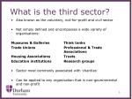 what is the third sector