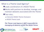 what is a theme lead agency