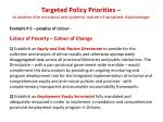 targeted policy priorities to address the structural and systemic nature of racialized disadvantage1