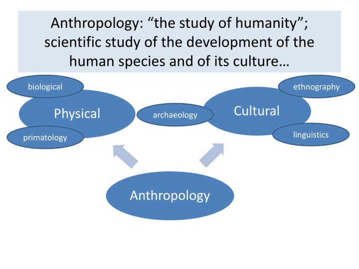 the origins of the use of anthropology and development of archaeological techniques Discovering archaeology (3-0-3) emphasizes scientific techniques and methodologies employed by archaeologists to reconstruct extinct cultures and lifeways, stages of archaeological investigation from hypothesis development to data interpretation, and heritage conservation.