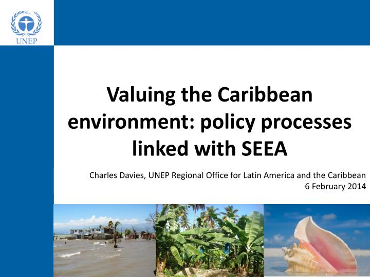 valuing the caribbean environment policy processes linked with seea n.