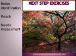 next step exercises
