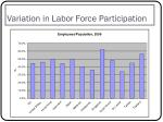 variation in labor force participation