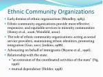 ethnic community organizations