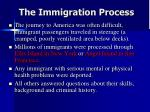 the immigration process