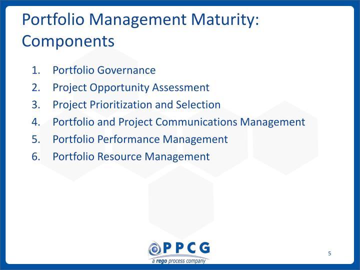 Portfolio Management Maturity: