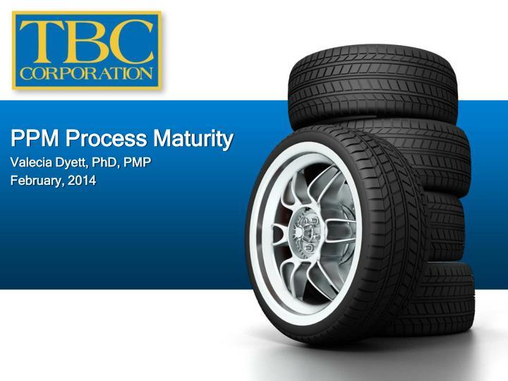PPM Process Maturity