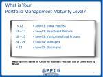 what is your portfolio management maturity level