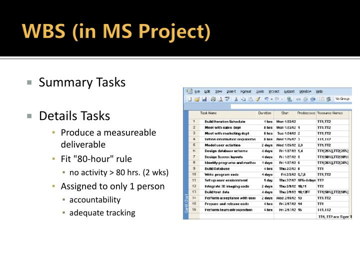 WBS (in MS Project)