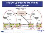 file i o operations and replica management