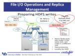 file i o operations and replica management4