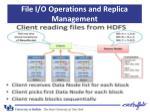 file i o operations and replica management8
