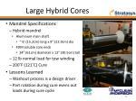 large hybrid cores