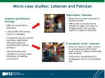 micro case studies lebanon and pakistan