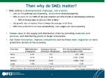 then why do smes matter