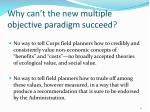 why can t the new multiple objective paradigm succeed